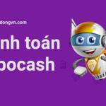 thanh toán robocash
