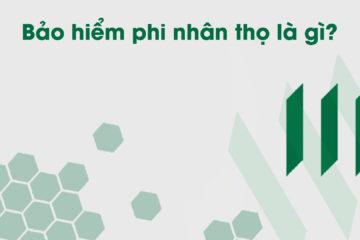 bao-hiem-phi-nhan-tho-la-gi